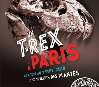 EXPO UN T. REX A PARIS JUSQU'AU 4 NOVEMBRE