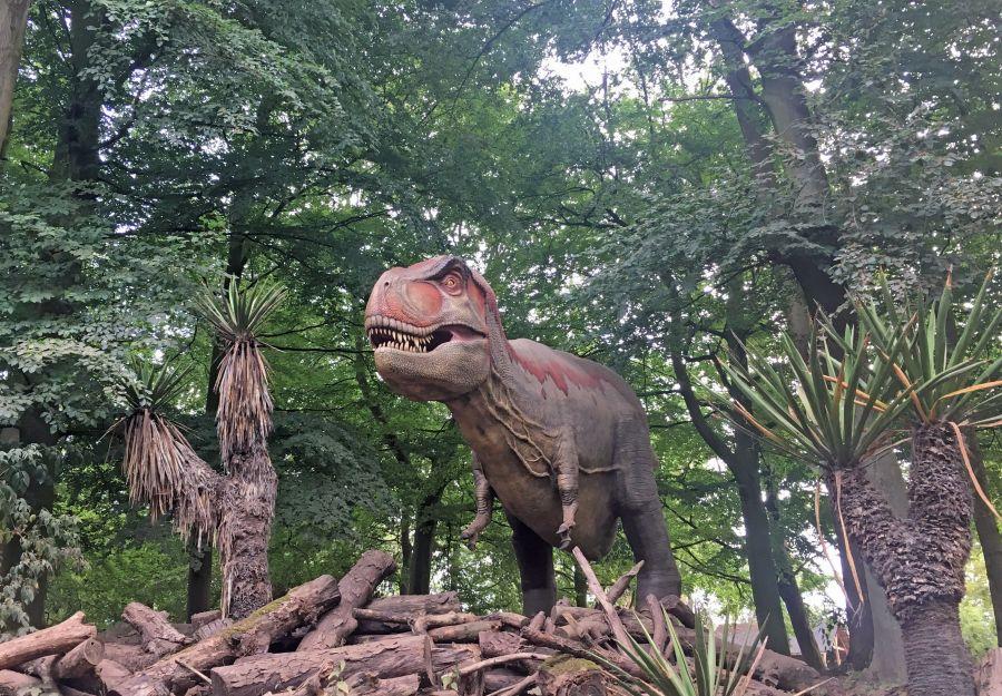 Ou voir des dinosaures ? - Image 2