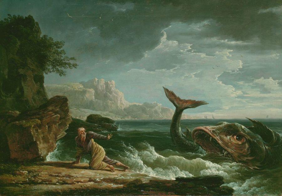 Un plongeur avale par une baleine !!? - Image 2