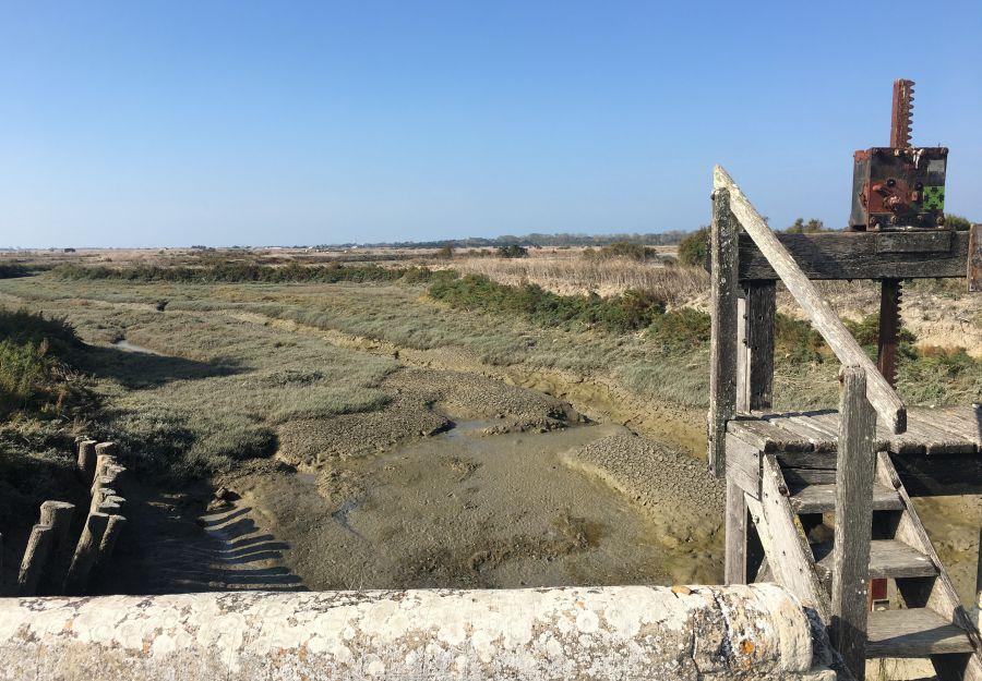 Anigaido recommande ! la reserve naturelle lilleau des n ... - Image 2
