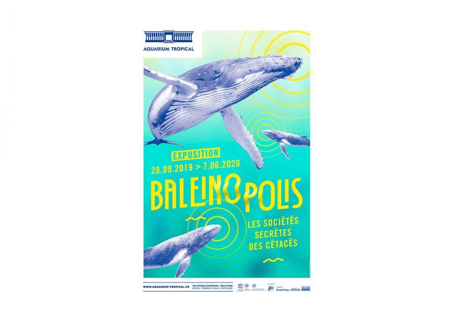Exposition baleinopolis a l'aquarium tropical de la port ... - Image 2