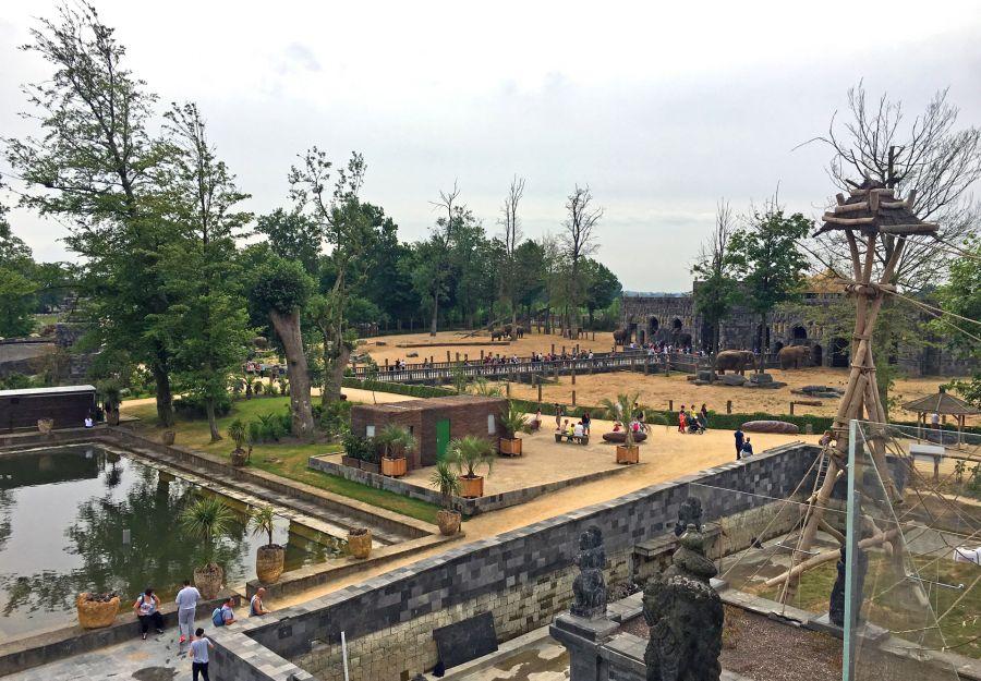 Reouverture au public des parcs zoologiques de plein air ... - Image 2