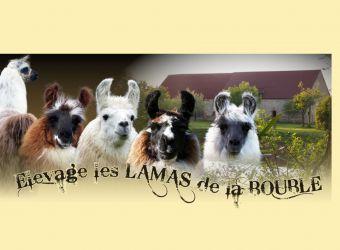 Photo ELEVAGE LES LAMAS DE LA BOUBLE
