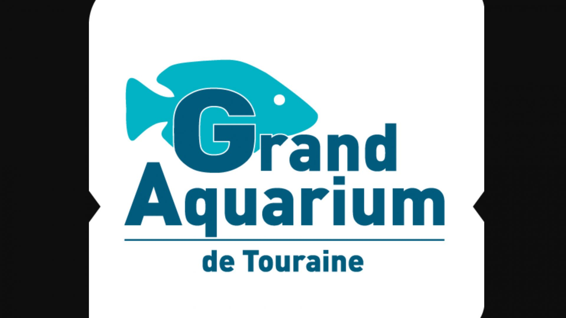 grand site de rencontres de poissons site de rencontres sans-abri