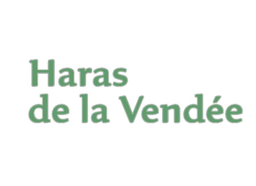Image du nom du Haras de la Vendée à La-Roche-sur-Yon, chevaux et spectacles équestres