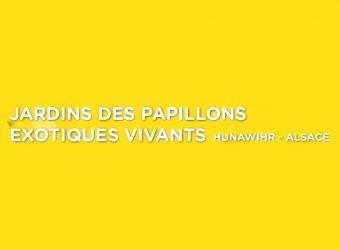 Photo JARDINS DES PAPILLONS EXOTIQUES VIVANTS DE HUNAWIHR