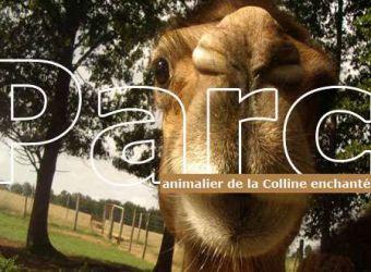 Photo LA COLLINE ENCHANTEE