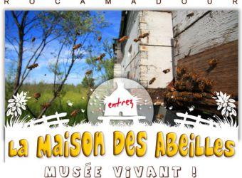 Photo LA MAISON DES ABEILLES