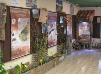 Photo d'une exposition nature à la Maison des Oiseaux du Haut-Allier à Lavoûte-Chilhac en Haute-Loire