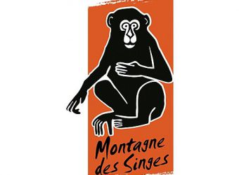 Photo LA MONTAGNE DES SINGES