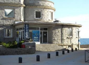 Photo LE MARINARIUM, STATION BIOLOGIQUE DE CONCARNEAU