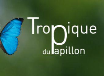 Photo LE TROPIQUE DU PAPILLON