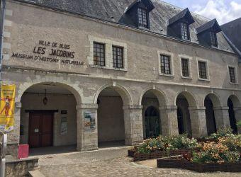 Photo MUSEUM D'HISTOIRE NATURELLE DE BLOIS