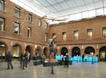 Photo MUSEUM DE TOULOUSE