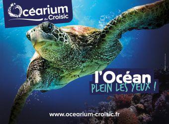 Photo OCEARIUM DU CROISIC