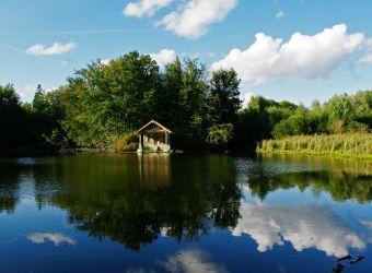 Photo d'un étang de la Réserve Naturelle des Etangs de Bonnelles dans les Yvelines