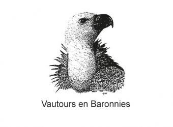 Photo LA MAISON DES VAUTOURS - VAUTOURS EN BARONNIES