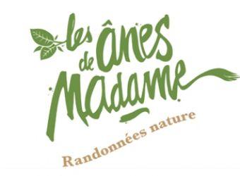 Photo LES ANES DE MADAME