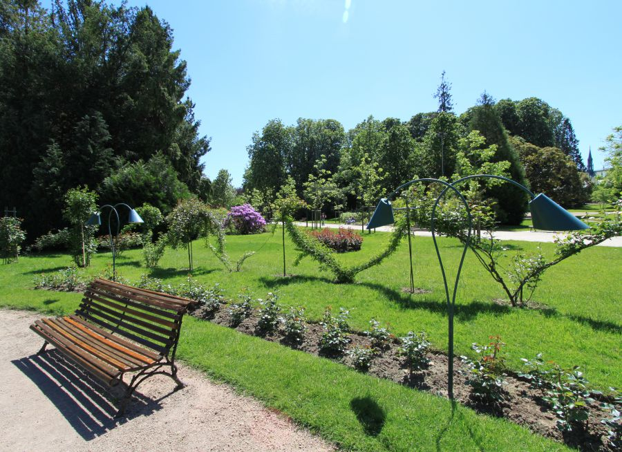 Photo de la Roseraie de la Pépinière à Nancy - Wikimedia Commons - Caroline Léna Becker - CC BY 3.0