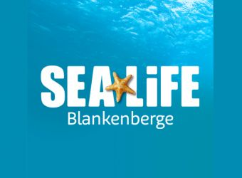 Photo SEA LIFE BLANKENBERGE